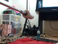 Chaturbate.com tightcouple webcam