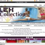 Flex Collection Membership Deal
